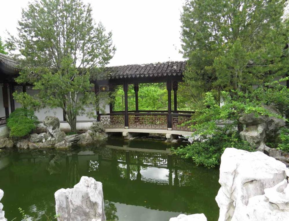 Plunus Mume Blossom And Fish In Chinese Scholar 39 S Garden In Staten Island New York